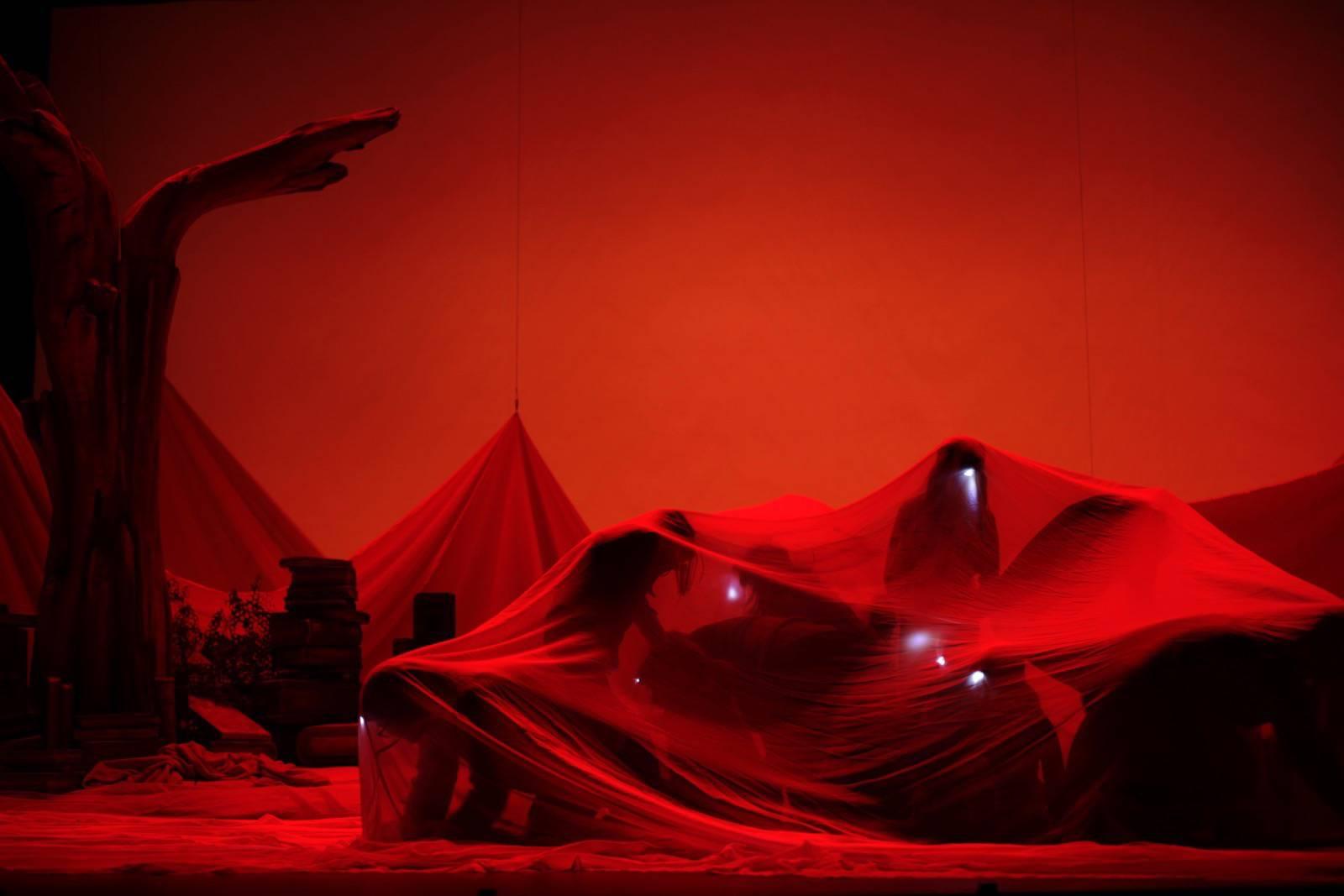 <em>Le jardin des secrets</em> (photo : Lisa Roerich)